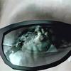 #9前編【バイオハザード1 :HD】プレイ日記~ついに黒幕を追い詰める