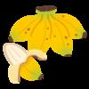 【健康】バナナ~毎朝食べてます、栄養を取るには最適な果物!?~ <コロナに負けるな>
