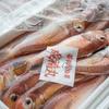 2020年3月27日 小浜漁港 お魚情報