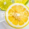 本日公開!レモンの爽やか画像