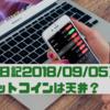 【投資日記2018年9月5日】ビットコインは天井!勇気を出してショートや!