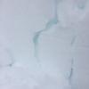 新型コロナ中に降った雪は 薄荷色