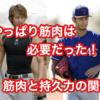 【たのトレ野球雑学】やっぱり野球に筋肉は必要だった。筋力とスタミナの関係性