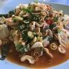 タイの甘酸っぱ辛い和え物⁉ ヤム ยำ yam