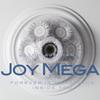 Joy Mega / Forever Is Something Inside You