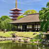 伝法院庭園の大池泉(東京都台東)