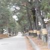 歩き旅のスケッチ[東海道]31・・・岡崎宿から藤川宿へ