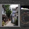 写真画像調整ソフト「SILKYPIX JPEG Photography 10」のプリセット「テイスト」を試してみた。