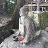 四国歩き遍路 第37日目(10月17日) 〜楽で恐ろしい山登り!の巻