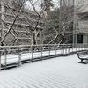 雪の日のキャンパス