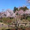 【東京】神代植物公園の大温室、素晴らしい子供の学習スポット!!