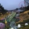 西武園遊園地♪ イルミネーション&ライトアップ桜〜☆*:.。. o(≧▽≦)o .。.:*☆