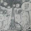 ワンピースブログ[五十一巻] 第496話〝ヤルキマン・マングローブ〟
