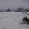 まさしく名残りの雪!