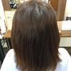 新潟 髪質改善 縮毛矯正 ストレート くせ毛のお悩み解決