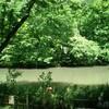 滑川森林公園を歩く(5月12日)