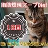 【レポ】脂肪燃焼スープダイエット・1日目/スープとフルーツの日