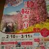 松田山桜祭り2018.2