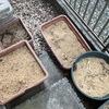 「堆肥作り」という新たなカテゴリを追加してみた(今更ではあるけれど)
