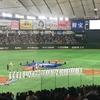 東京ドーム『WBSC プレミア12 日本vsアメリカ』(野球ネタ)