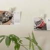 白い壁にカレンダーを飾って華やかに!壁を傷つけずに飾れるおすすめグッズ