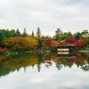 【写真複製・写真修復の専門店】お天気を加工 東京・昭和記念公園