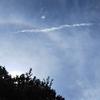 太陽に現れた虹の輪、ハロ現象なの?空の不思議な現象