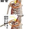 腕を上げる動作   〜鎖骨編〜