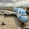 【飛行機搭乗レビュー】NH181便 ホノルル→成田 ANA A380 Flying Honu プレミアムエコノミークラス搭乗記