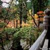 日本 谷汲山華厳寺の今年の紅葉 その2