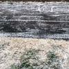まさかの雪が降る中の入園式( ;´Д`)そしてちーくんは年中さんに