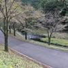 秋キャンプ 松田川ダム湖畔キャンプ場