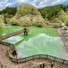 八重桐の池(静岡県小山)