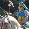 中世の西洋甲冑や西洋武器で戦う 世界のバトル大会