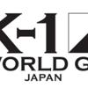 【選手の過去の試合動画】K-1 WORLD GP 2019 JAPAN K'FESTA.2