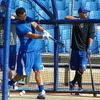 野球に特異的な適応(多平面での回旋運動、特に肩、体幹、および股関節における回旋では、協調性を必要とし、これらの動作の想起と反覆を連続的にも散発的にも実行できる筋群と関節構造を必要とする)