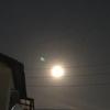 東の空見上げますと満月でした。ブルームーン&マイクロムーンなんだそうです。