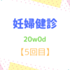 20w0d 妊婦健診【5回目】 性別判明