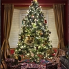 X-MAS CTF Writeup Forensics Oh Christmas Tree