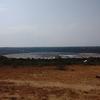 【ウガンダ】クイーンエリザベス国立公園でライオンに会う!そして世界最小民族「ピグミー族」にも!
