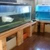 熱帯魚水槽の保温対策(水槽本体・濾過槽 )