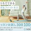 【30日体験 110円(税込)】SOELU申し込み