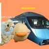【箱根フリーパスの実力】箱根旅行【乗り物ざんまい】