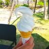 突然真夏、よってソフトクリームとアイスコーヒー。