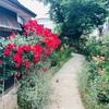 2019/6/5 早起きは三文の徳