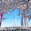 春のうららの隅田川