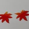 プラバンの紅葉