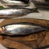 大漁❗️   新鮮な魚介類は美味しい!