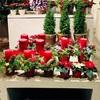 クリスマスの到来を楽しむドイツ