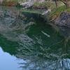 今朝は菊川から...